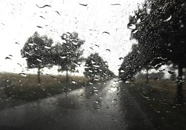regen1