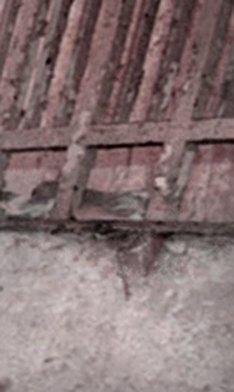bild1