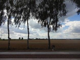 8-spaziergang-mit-conny-niehoff-eine-kleine-pause-c-foto-von-susanne-haun